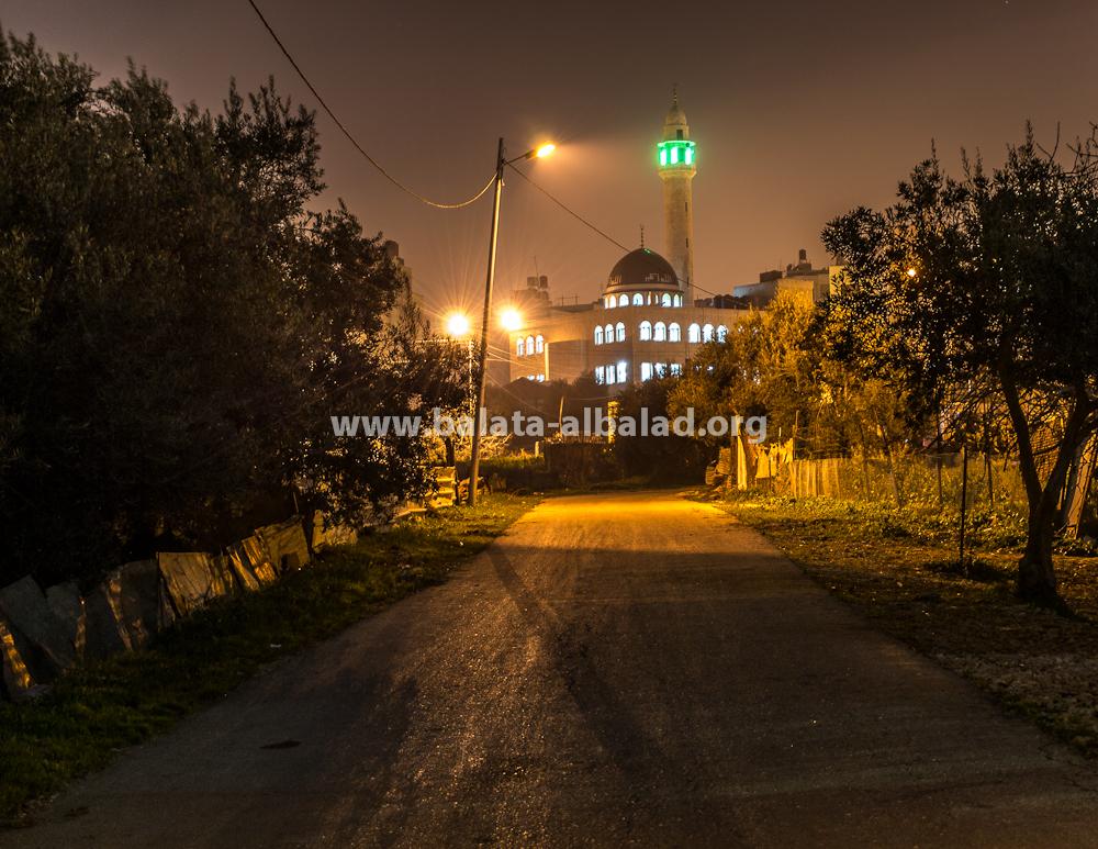 مسجد أبو بكر الصديق
