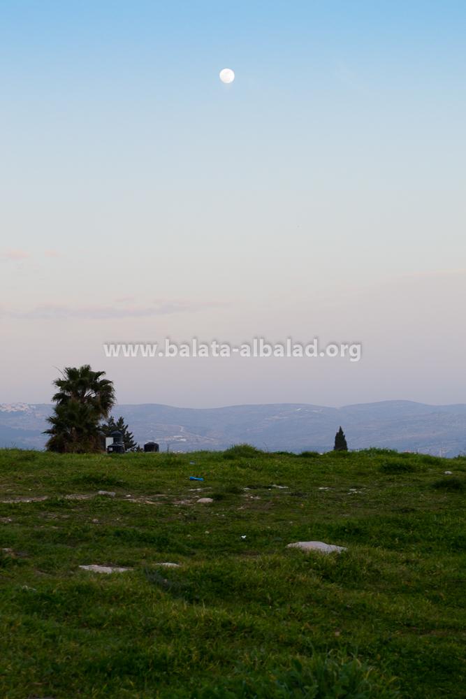 من تل بلاطة