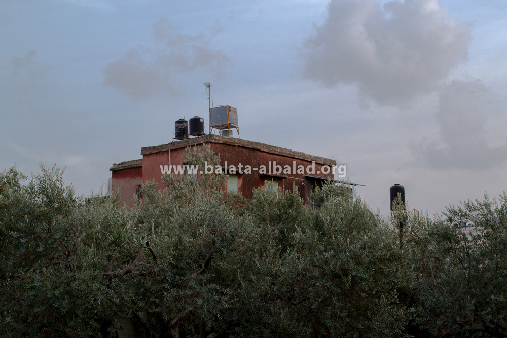 بيت المرحوم الحاج أبو وليد