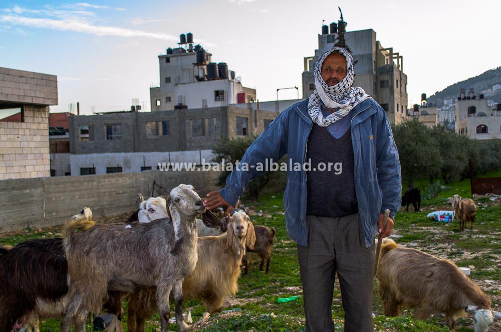 الحج أبو سعد