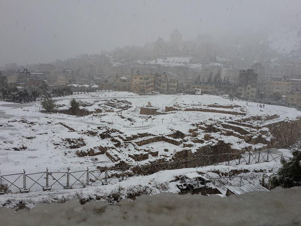 تل بلاطة - تصوير محمد الحسن دويكات
