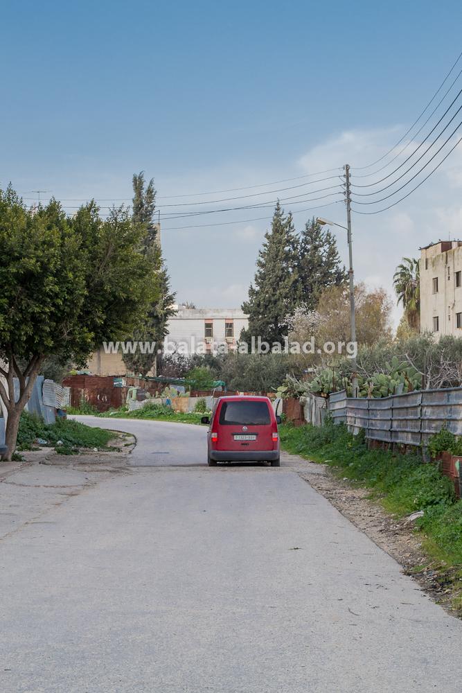 الشارع بين مزرعة أبو راني وعمارة آل نصار