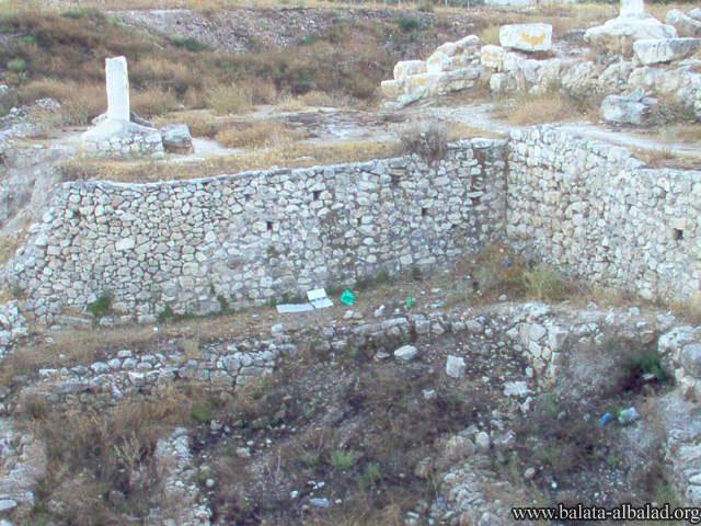 تل بلاطة - شكيم